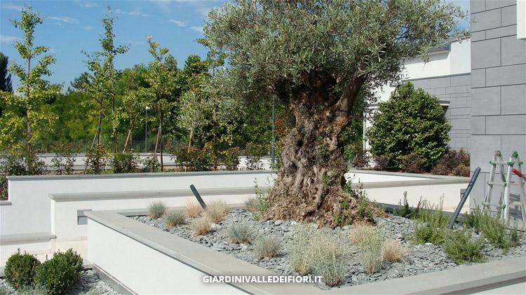 privati giardini moderni per ville di nuova costruzione