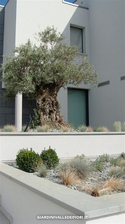 Giardini valle dei fiori ha progettato e sta realizzando - Giardini di design ...