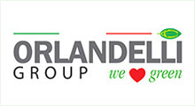 Orlandelli Group LLC